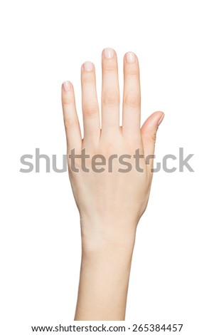 Beautiful woman's hands isolated on white background - stock photo
