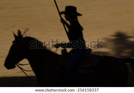 beautiful woman silhouette galloping on the horse out of focus - stock photo