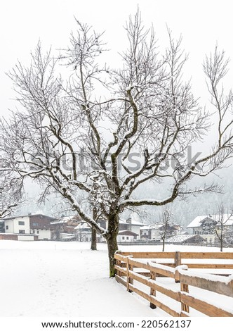 Beautiful wood and a new fence in the Mayrhofen, Austria - stock photo