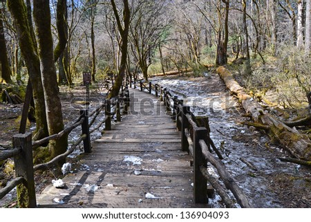 beautiful wood made path pass through the forest nobody in the cold winter, Yunnan china - stock photo
