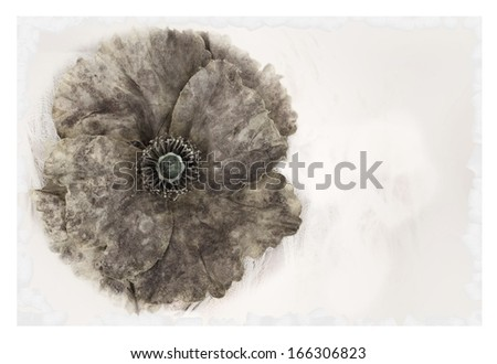Beautiful Worn Grunge Flower - stock photo