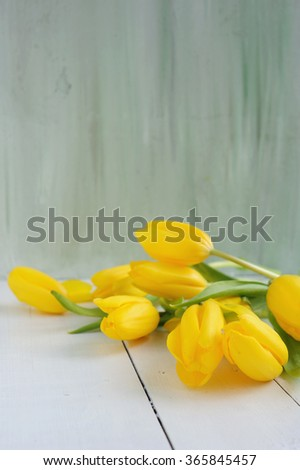 Beautiful yellow tulips on painted background - stock photo