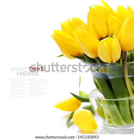 Beautiful yellow tulips over white (with easy removable sample text) - stock photo