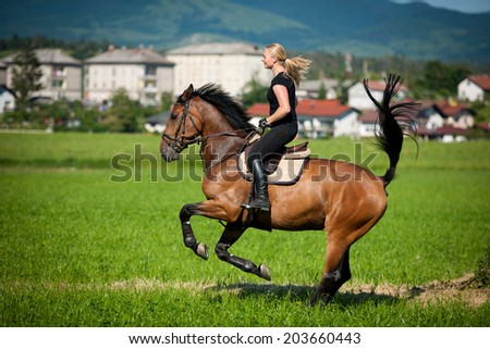 Beautiful young blonde woman riding a horse on a farm - stock photo