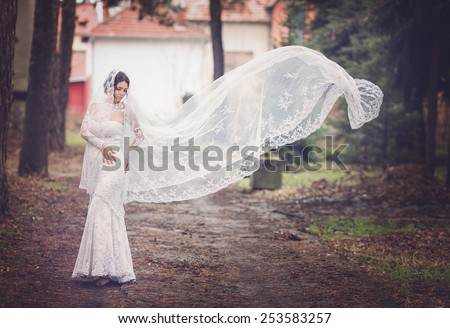Beautiful young bride with a veil - stock photo