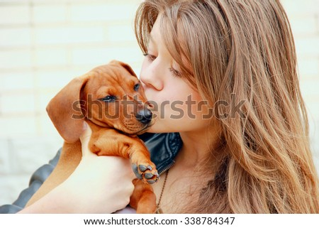 beautiful young girl embraces and kisses a red dachshund puppy on a background of white brick wall - stock photo