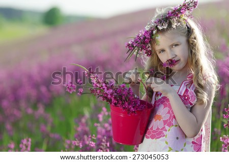 Beautiful, young girl on the field - stock photo