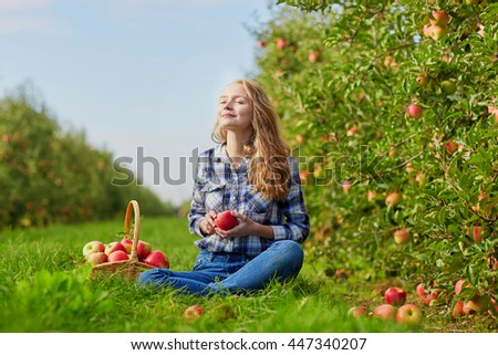 Beautiful young woman picking ripe organic apples in basket in orchard or on farm on a fall day - stock photo