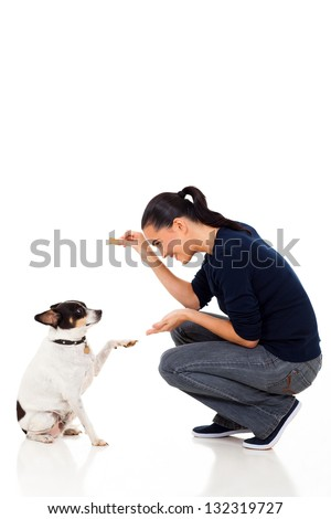 beautiful young woman training her dog - stock photo
