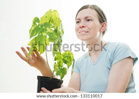 Beautiful young woman with green sprout of tree in her palms - stock photo