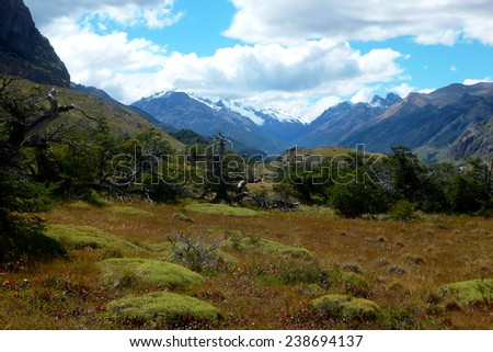 Beautifull landscape in Los Glaciares national park (laguna Capri trail). El Chalten, Patagonia, Argentina, South America - stock photo