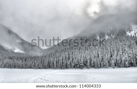 Beautifully simple snow covered mountain trees with clouds. - stock photo