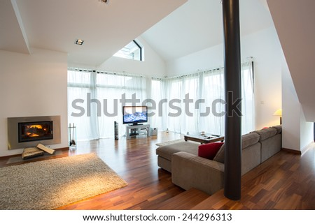 Beauty and spacious living room in traditional design - stock photo