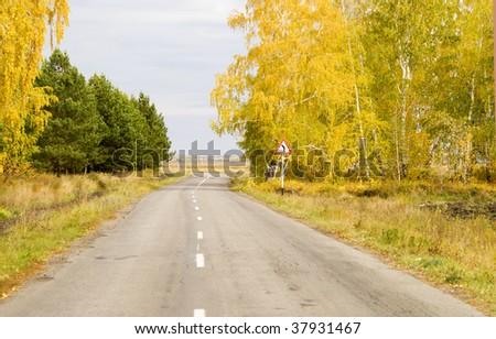 beauty autumn road - stock photo