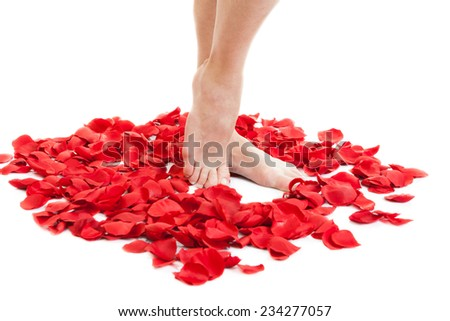 beauty female feet in scarlet rose petals - stock photo