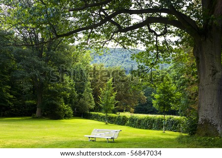 beauty garden view - stock photo