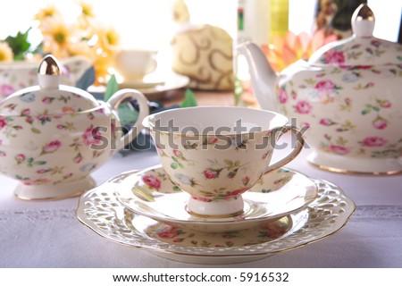 Beauty porcelain - stock photo