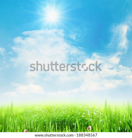 Beauty summer meadow under blue skies - stock photo