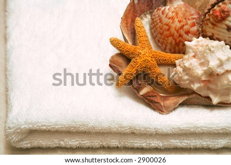 beauty, wellness, spa concept - white towel with seashells, with copy space - stock photo