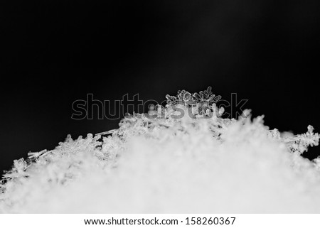 beauty white snowflake crystals on dark background - stock photo