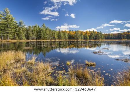 Beaver Pond in Autumn - Algonquin Provincial Park, Ontario - stock photo