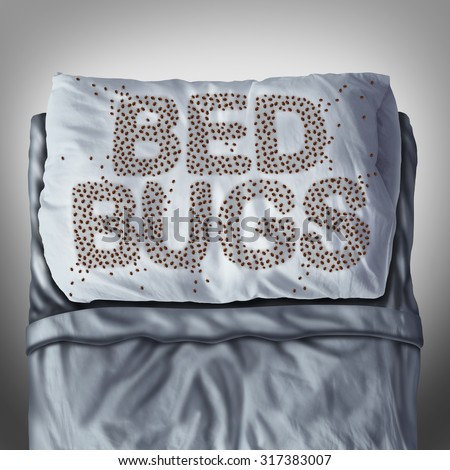 Bed bug on pillow and in bed as a bedbug infestation concept shaped as text letters as parasitic insect pests under the sheets as a hygiene health care symbol. - stock photo