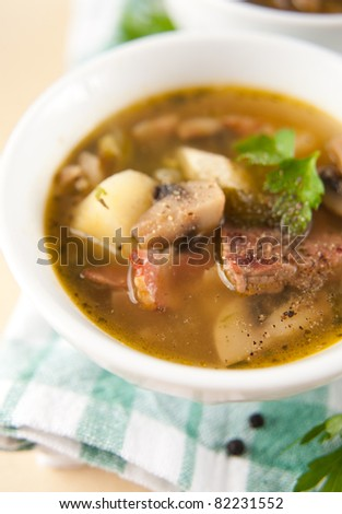 Beef, Bacon, Parsnips and Leek Soup with Herbs and Spices - stock photo