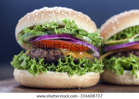 Beef burgers on a wooden board with aromatic spices. Studio Shot - stock photo