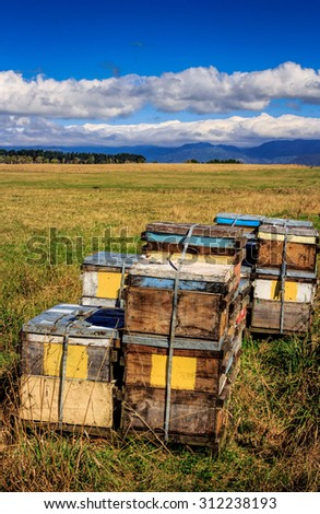 beehive farm boxes summer landscape - stock photo
