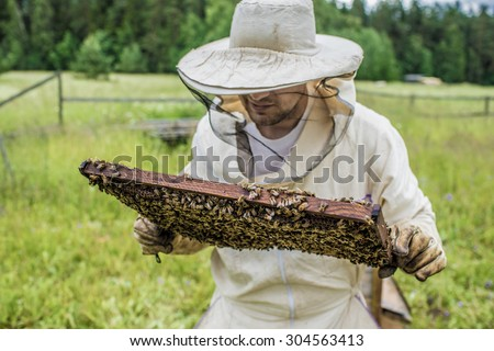 Beekeeper is working with bees and beehives on the apiary. - stock photo