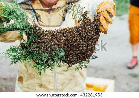 beekeeper with a swarm of bees - stock photo