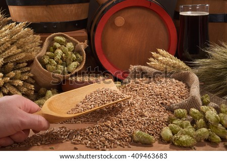 beer and beer barrel, hops, wheat, grain, barley and malt - stock photo