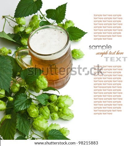Beer and hop isolated on a white background - stock photo