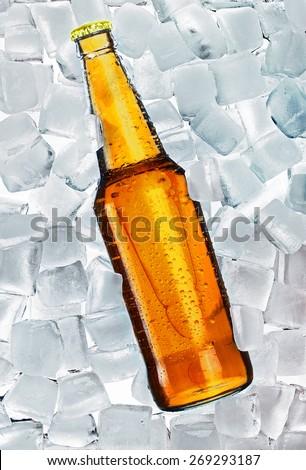 Beer bottle on ice - stock photo