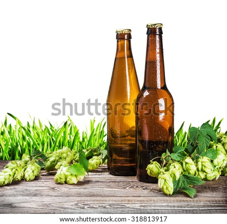 beer bottles and a branch of hops on a white background - stock photo