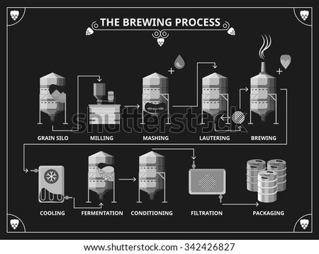Beer brewing process - stock photo