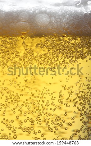 Beer collection: Closeup view of beer in glass - stock photo