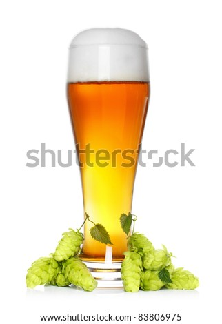 beer glass with fresh green hop - stock photo