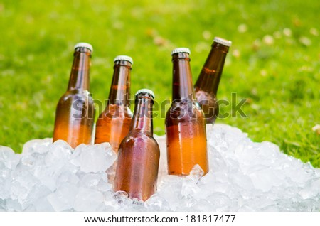 beer ice outside - stock photo