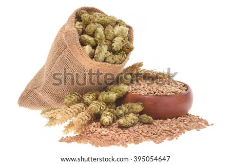 beer ingredients â?? hops, wheat, grain, barley and malt isolated on white  - stock photo