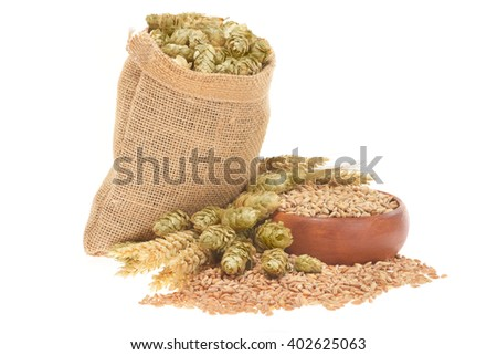 beer ingredients, hops, wheat, grain, barley and malt isolated on white  - stock photo