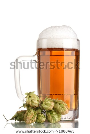 beer mug and green hop isolated on white - stock photo