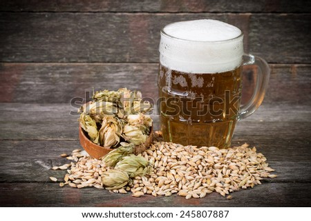 Beer with barley and hops - stock photo