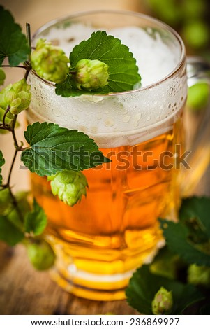 beer with hop - stock photo