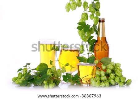 Beer with hops - stock photo