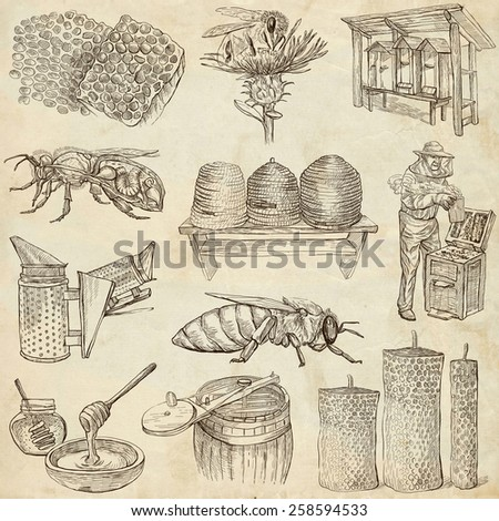 BEES, BEEKEEPING and HONEY - Collection of an hand drawn illustrations. Full sized hand drawn illustrations, Originals, drawing on old paper. (pack no.2) - stock photo