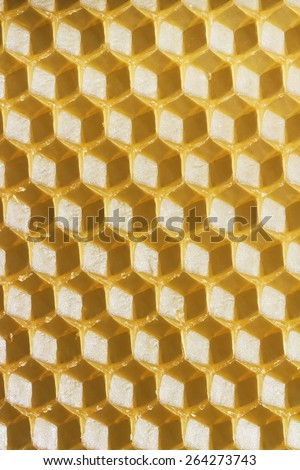 Beeswax cells background. Natural beeswax cell which helps bees to built honeycomb - stock photo