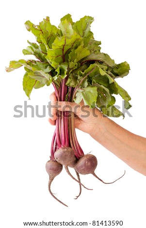 beetroot in hand - stock photo