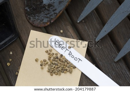Beetroot seeds ready to plant with hand written label. - stock photo