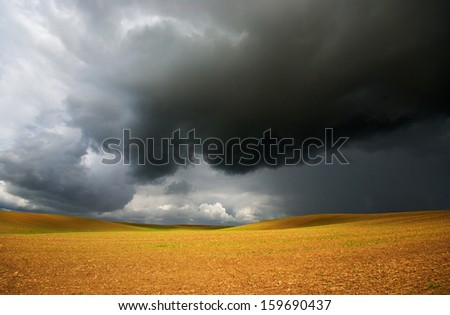 Before the storm, and gold field  - stock photo